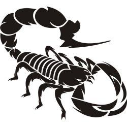 Autocollant Scorpion 5