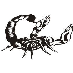 Autocollant Scorpion 10 pour carrosserie ou vitres de voitures
