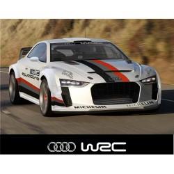 Bandeau pare soleil Audi WRC